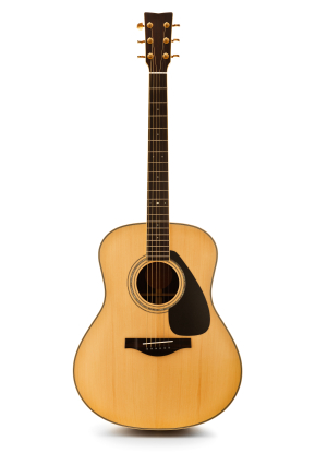 history of the guitar The electric guitar is the result of guitarists' desire to play the guitar and hear it at a louder volume this became more important during the big band era, as the hollow body acoustic guitars of that time struggled to be heard along with the other instruments.