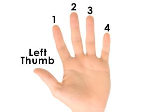 Left Hand Finger Numbers for Uke
