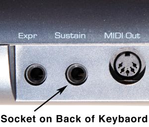 pedal socket 01