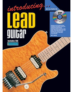 Introducing Lead Guitar - Teach Yourself How to Play Guitar