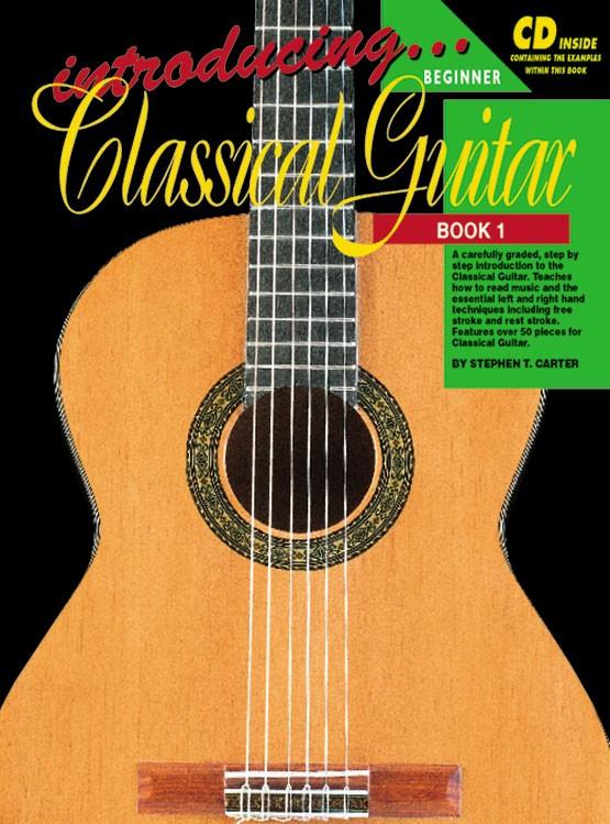 teach yourself guitar book pdf