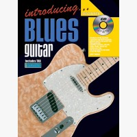 Introducing Blues Guitar