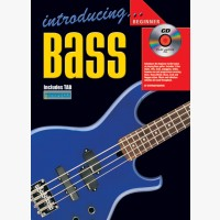 Introducing Bass