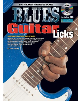 Progressive Blues Guitar Licks - Teach Yourself How to Play Guitar